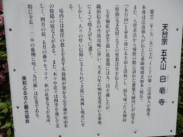 b9_R.JPG