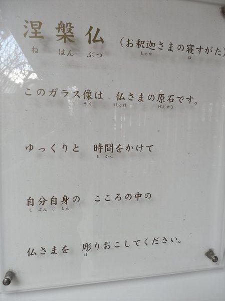 j15_R.JPG