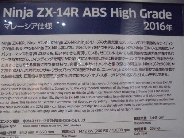 k25_R.JPG