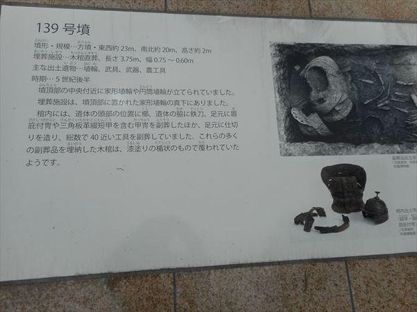 m48_R.JPG