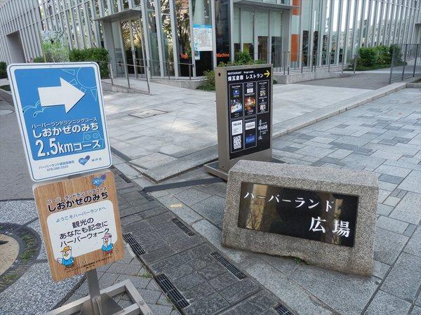 n11_R.JPG