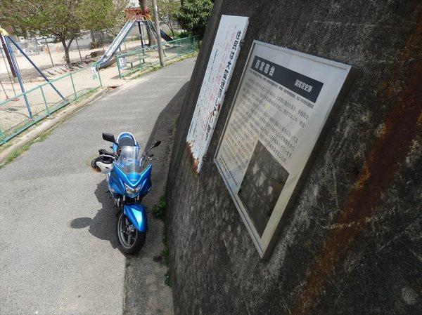 n3_R.JPG