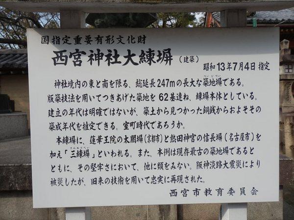 n5_R.JPG