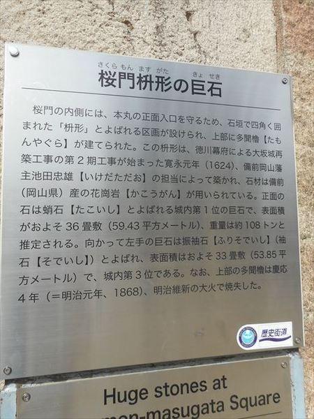 o26_R.JPG