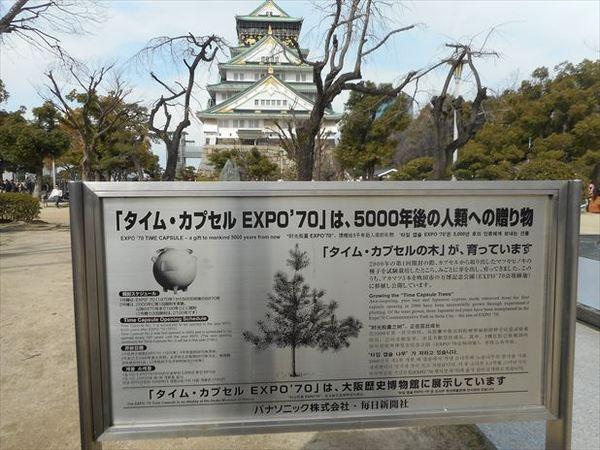 o35_R.JPG