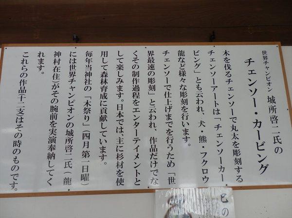 t22_R.JPG