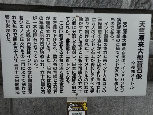 t41_R.JPG