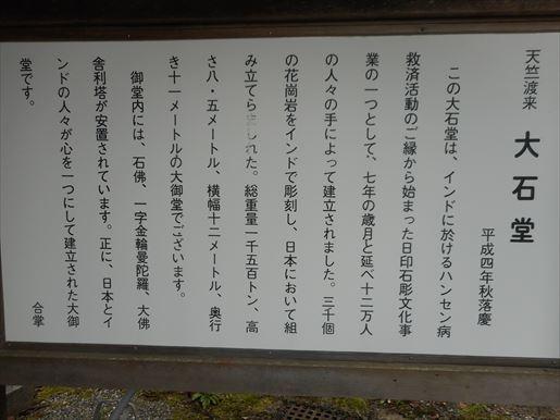 t60_R.JPG