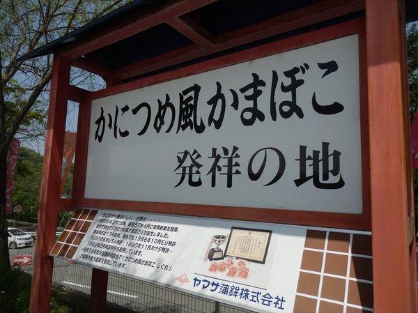 y9_R.JPG