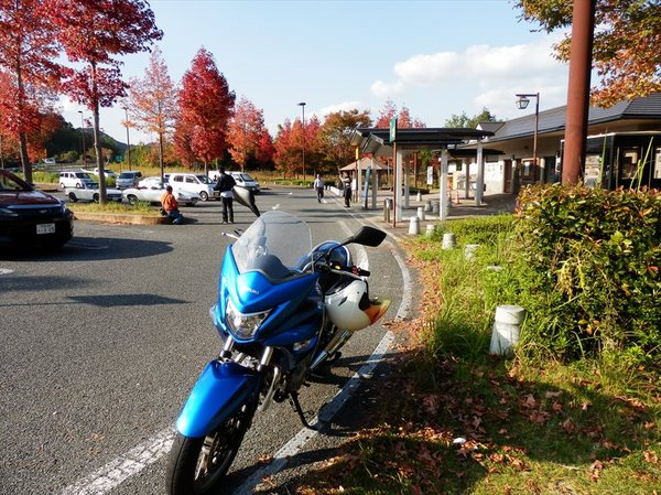 m23_R.JPG