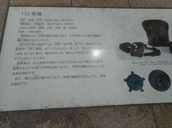 m46_R.JPG