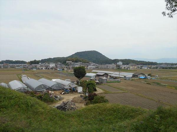 m50_R.JPG