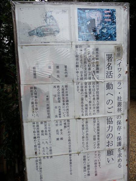 r8_R.JPG