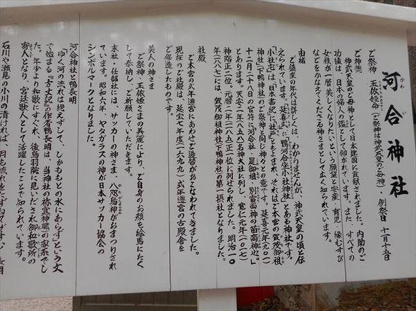s7_R.JPG