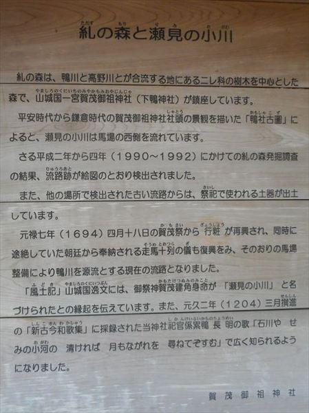 s9_R.JPG