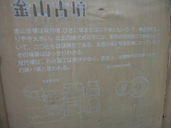 t35_R.JPG